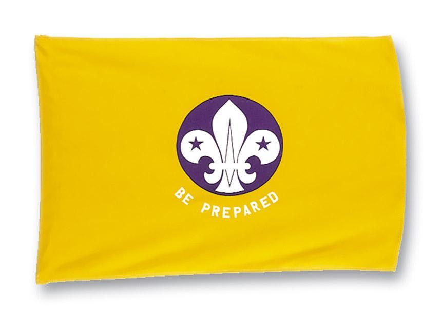 Cub Scout Flag