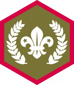 Chief Scout Gold Award day of celebration @ Pinewood Scout Centre | Croydon | United Kingdom